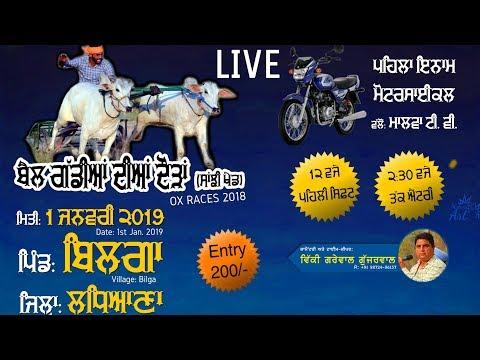 BILGA (Ludhiana) OX RACES / ਬੈਲ ਗੱਡੀਆਂ ਦੀਆਂ ਦੌੜਾਂ - 2019 🔴 LIVE STREAMED VIDEO