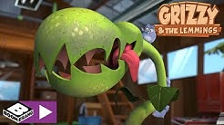 Grizzy and the Lemmings | Lemming Plant | Boomerang Africa