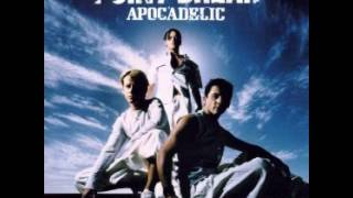 Point Break - Apocadelic