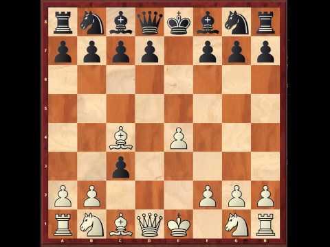 Правила захватывающей настольной игры шахматы. Как играть