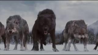 Финальная битва - Сумерки. Сага. Рассвет: Часть 2 (2012)