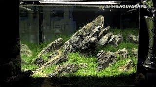 The Art of the Planted Aquarium 2017 - Nano tanks 26-28