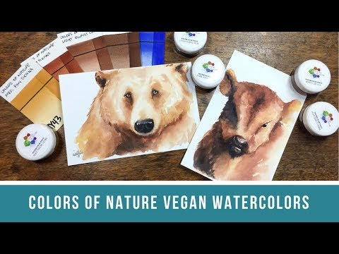 Colors of Nature Watercolor Review | Vegan, Non-Toxic, and Cruelty-Free Watercolor Paints