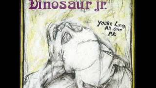 Watch Dinosaur Jr Raisans video