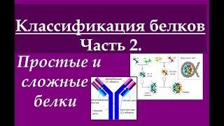 Биохимия. Классификация белков. Ч.2. Простые и сложные белки.