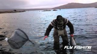 Fly fishing in Iceland, big trout
