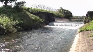 平堰 2 2010年10月2日撮影