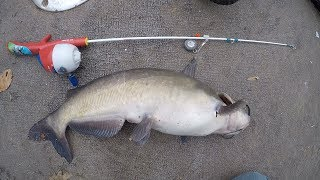 Toy rod fishing challenge - Catfishing with kids