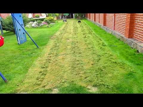 Вопрос: Зачем осенью косят траву (газоны)?