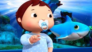 Little Baby Bum   Baby Shark Dance + More Underwater Nursery Rhymes and Kids Songs   Kids Videos