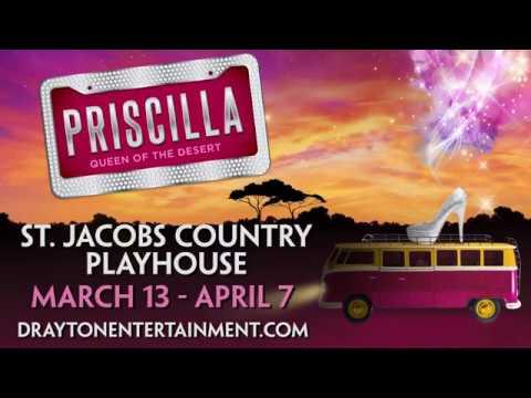 Priscilla, Queen of the Desert thumbnail