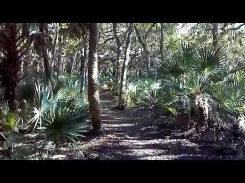 Hiking in Florida - Hammock Trails At Merritt Island Wildlife Refuge, Brevard County