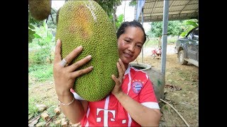 Awesome  jackfruit  Dessert  Recipe Delicious    Village Food Factory