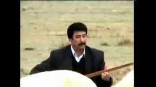 Hanifi Berber - Kiraz Dalı