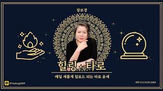 [장보경타로  맛집 ]타로실시간 /타로생방송/타로1질문만원/평생 사주3만/슈퍼쳇 환영!!!