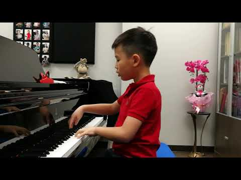 Anson Yu 7 Years Plays The Wind By C.H.Tan