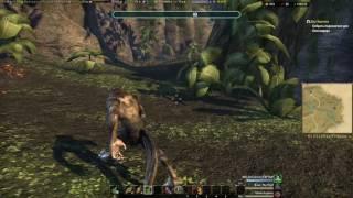 TES Online: Как стать оборотнем (Werewolf)