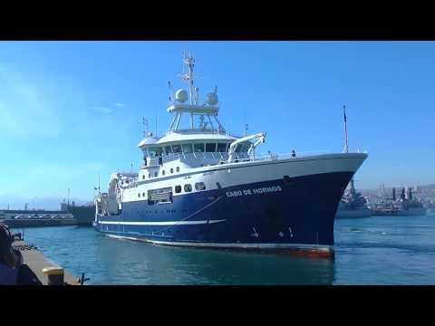 Biomasa de Merluza Austral se encuentra en buenas condiciones comprobó el IFOP