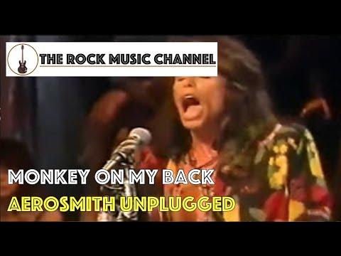 02 Aerosmith Unplugged - Monkey on my back