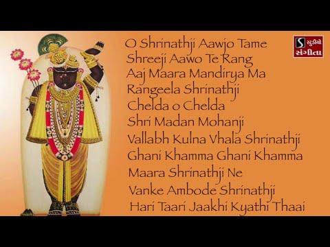 Shrinathji Satsang | 11 Beautiful Songs | Hari Taari Zaakhi