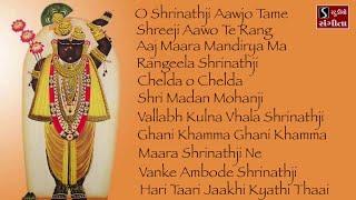 Shrinathji Satsang   11 Beautiful Songs   Hari Taari Zaakhi