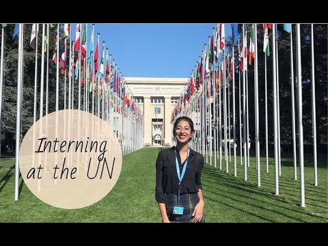 Interning At The UN - How To Apply, What Is It Like, What Do You Do?