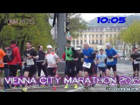 Vienna City Marathon 2016 - alle Läufer vor Schloss Schönbrunn KM 16,25