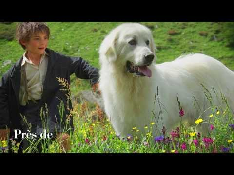 ZAZ - Belle (extrait de la BO du film