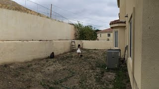 Mom Left Her Girls With Their Sick Dad  Then When She Sees What They Did To The Backyard Woah