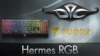 Gamdias Hermes RGB. Стандартный RGB-board.