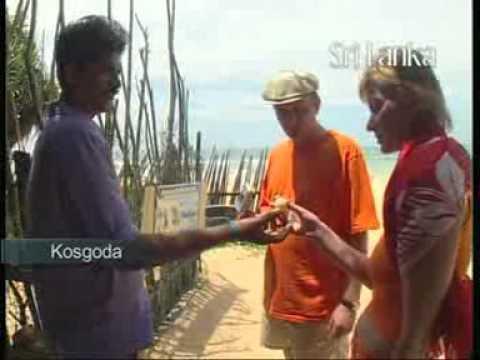 Beauty of Southern Province, Sri Lanka - www.lkatours.com