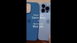 아이폰13프로 : 시에라블루 / 블루제이 정품 실리콘 …