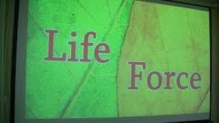 Открытый урок «Основы безопасности жизнедеятельности»
