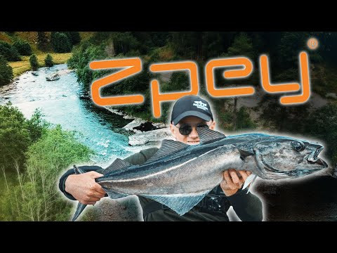 Fishing In Norway With Zpey - 3 Action Packed Days At Todalen!