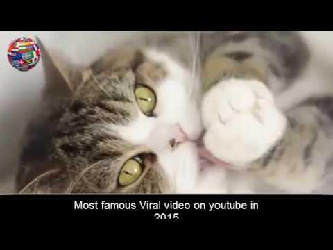 famous video
