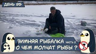 День 95 Зимняя рыбалка Часть 2 О чем молчат рыбы