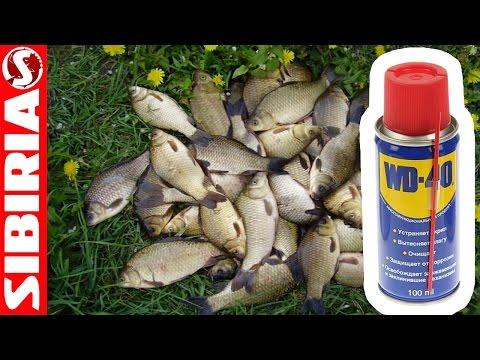 Секретная манка с WD-40. Рецепт приготовления ловчей Манки для рыбалки. Супер насадка