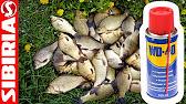 бетаин для рыбалки купить в аптеке - YouTube