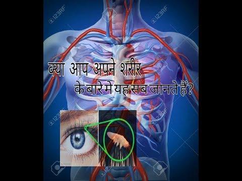 human-body-facts-||-हमारे-शरीर-के-रोमांचक-रहस्य-||-human-body-info-||-human-body-amazing-facts