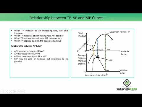 Relationship between TP, AP and MP Curves