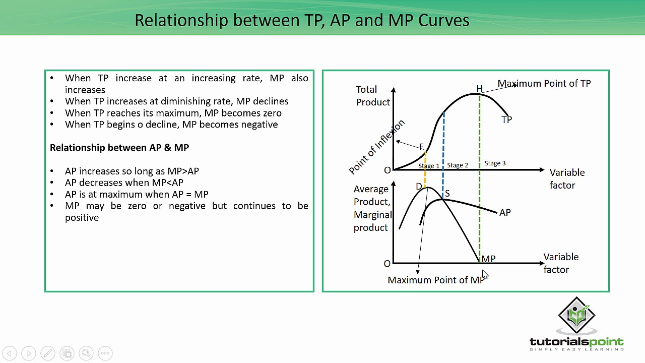 Relationship Between Tp Ap And Mp Curves Youtube