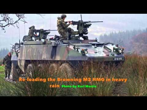 Irish Army MOWAG Piranha IIIH CRV