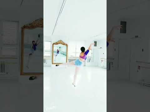 sylph at royal ballet studio in Stuttgart 🇩🇪🐈