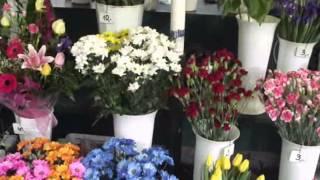 Krakowskie kwiaciarki.