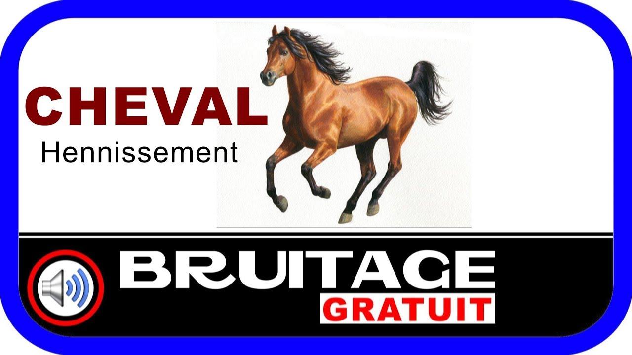 hennissement cheval gratuit