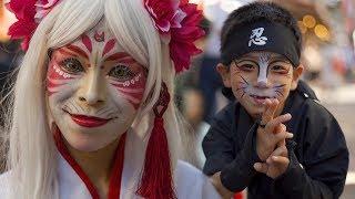 Japansand39s Supernatural Cat Festival - Bakeneko - 化け猫フェスティバル
