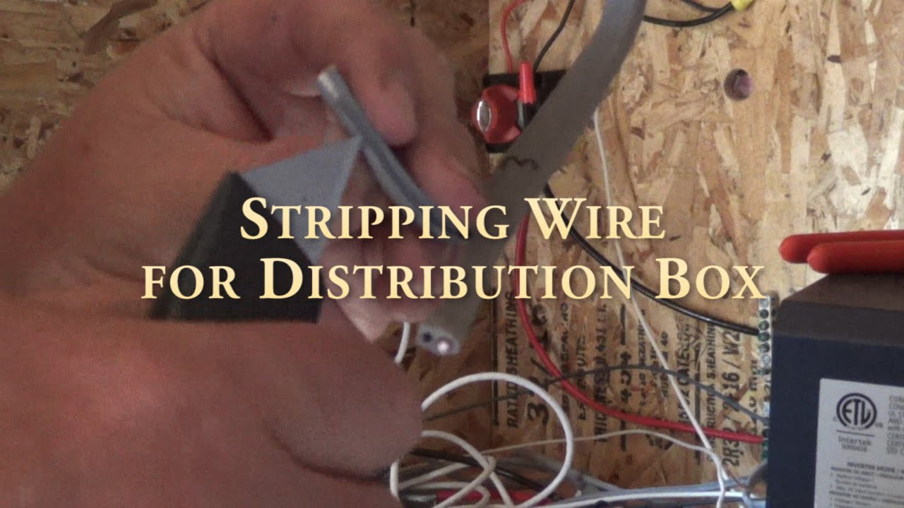 Stripping Wire For Electrical Panel Distribution Box Youtube Home Wiring