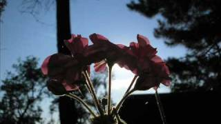Martha Elefteriadu, Dežo Ursiny - Vítam slunce ranní