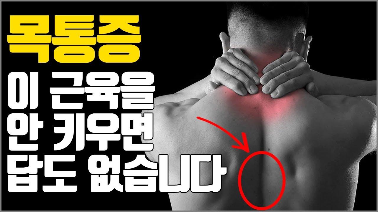 잦은 목통증과 프레스 중량이 비교적 안는다면 꼭 발달시켜야 하는 근육