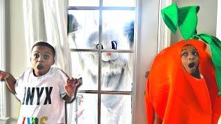 Bad Baby Bunny ATTACKS Carrot - Evil Rabbit GONE WILD Shasha And Shiloh - Onyx Kids